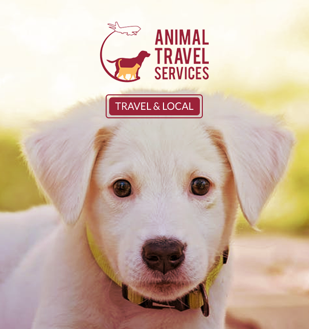 Animal Travel  Services
